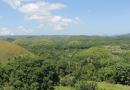 フィリピン・ボホール島の幻想的な世界遺産「チョコレート・ヒルズ」