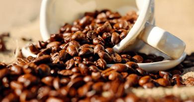 栽培から焙煎までこだわりぬいたフィリピン発祥のカフェ「フィガロコーヒー」