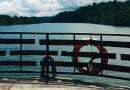 フィリピン・ボホール島観光の定番、ロボック川クルーズで大自然を満喫しよう!