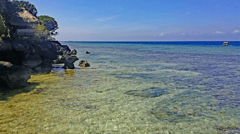 ウミガメの遭遇率が高いフィリピン・セブのシュノーケリングスポット「モアルボアル」